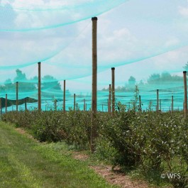Smart Net Bird Netting, 50' x 337'