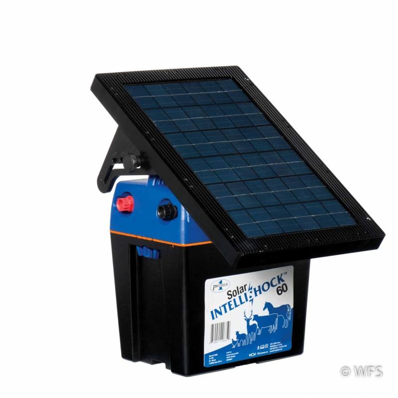 Intellishock 60 Solar