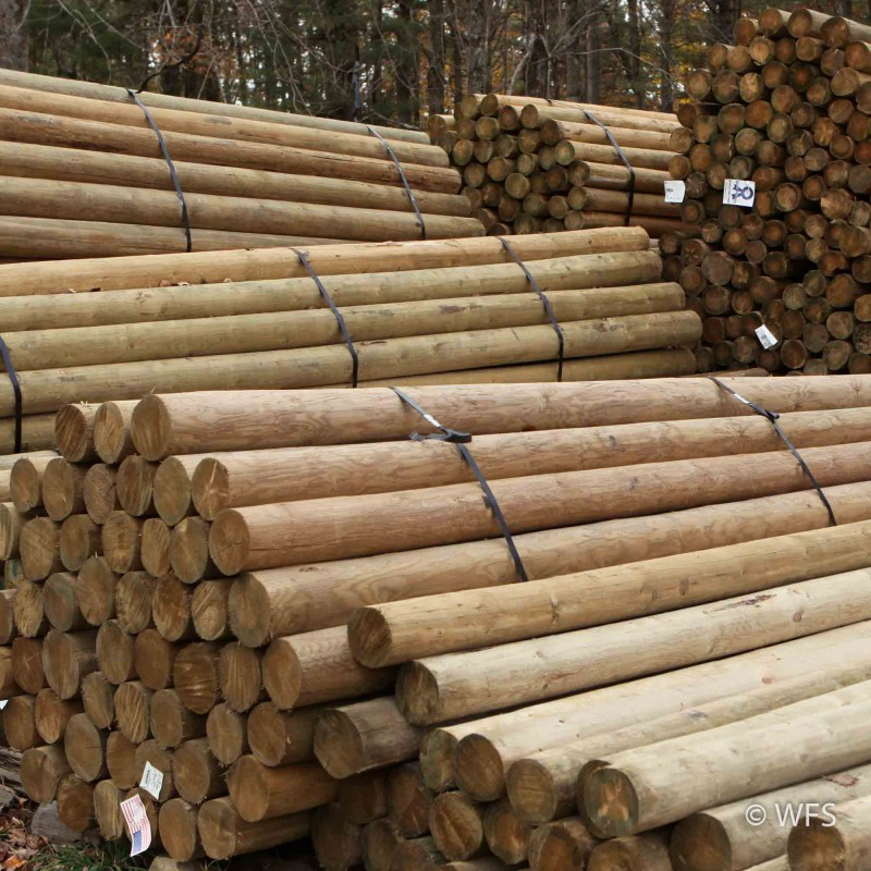 "Premium Lodge Pole Pine, PT 4-5"" x 11'"