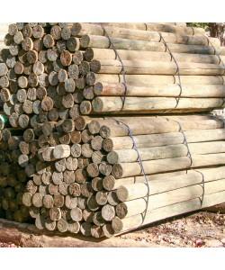 """Southern Yellow Pine, PT 3-4"""" x 7'"""