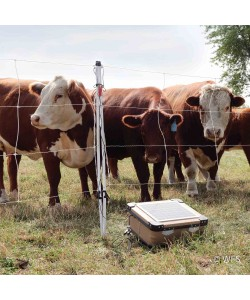 Cattle QuikFence™ 4/48/24 x 100'