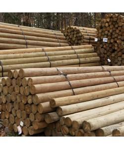 "Premium Lodge Pole Pine, PT 5-6"" x 13'"