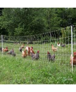 PoultryNet™ 12/48/3 x 82'