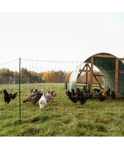 PoultryNet™ Plus 12/42/3 x 100', Green/Black