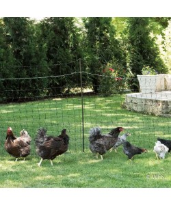 Shock-or-Not Chick Fence