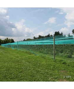 Smart Net Bird Netting, Side Curtain 12' x 337'