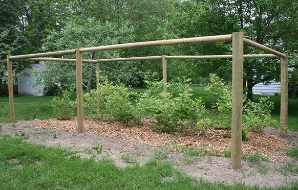 Small Fruit Fencing from Wellscroft