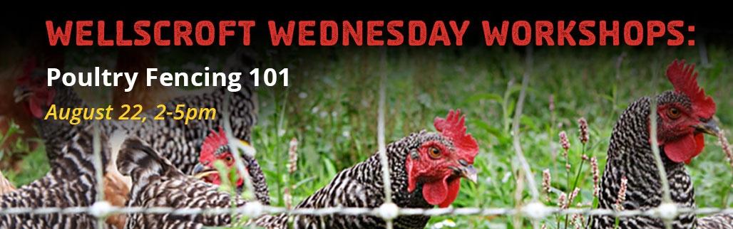Wellscroft Wednesday Workshop