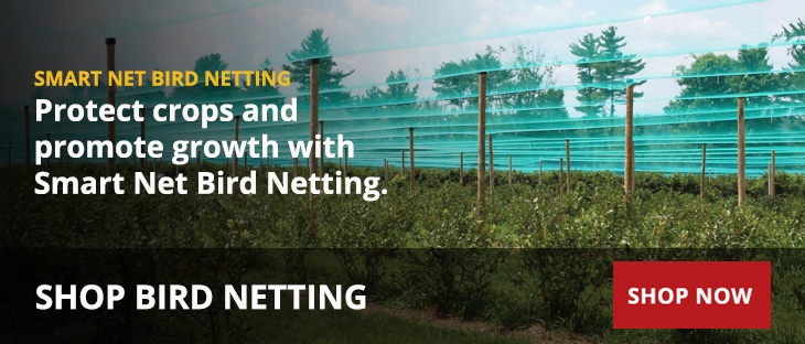 Bird Netting for Crop Protection