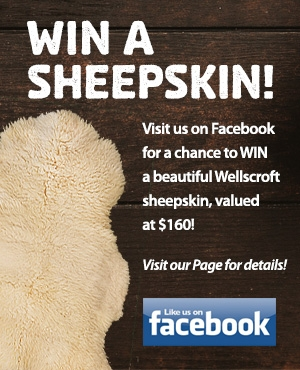 Win A Sheepskin Facebook Promotion