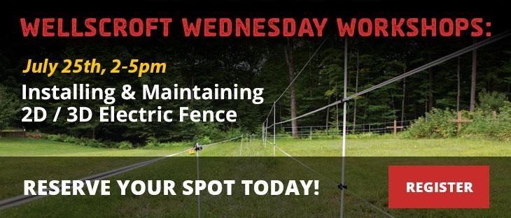 Wellscroft Wednesday Workshops