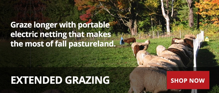 Extended Grazing