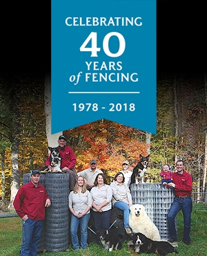 Celebrating 40 Years of Fencing!