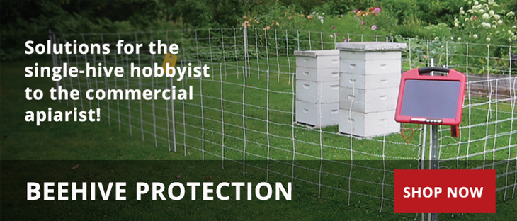 Protection options for behives